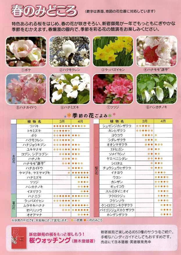 新宿御苑 桜の品種と開花時期