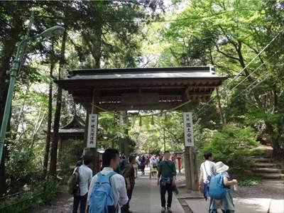高尾山 山道4