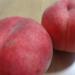 夏かんろって知ってますか? 市場にほぼ出回らない初夏の桃!!
