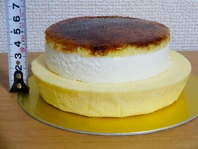 ブリュレチーズケーキの高さ